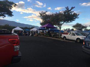 Observations of Daily Island Life 1 - Maui Hawaii